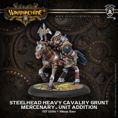 Mercenary Steelhead Heavy Cavalry (1)